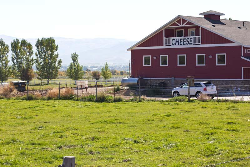 Heber Valley Cheese